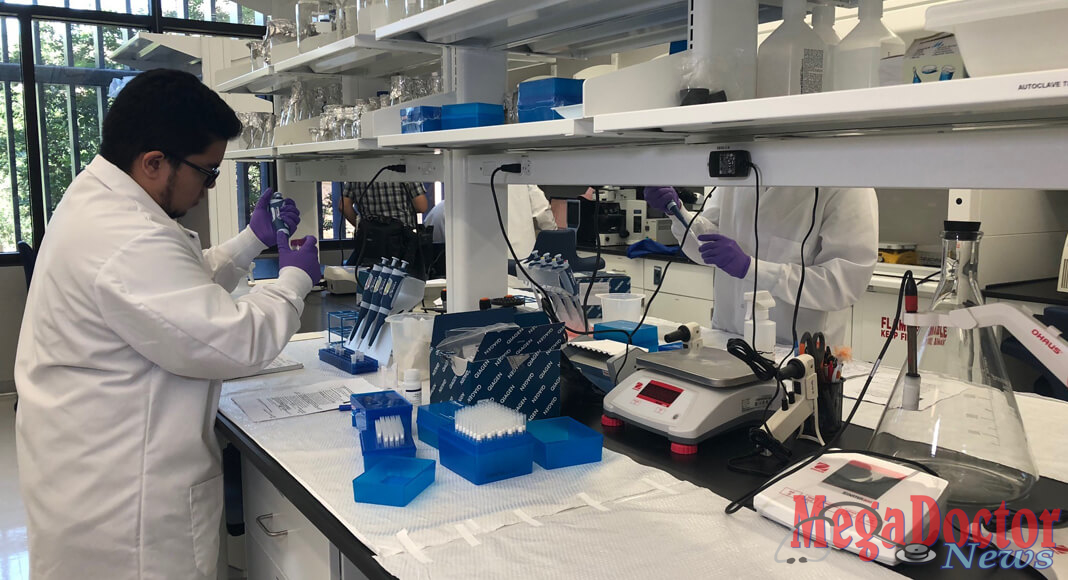 Dionn Carlo Silva, a UTRGV biology graduate student, is seen here in UTRGV assistant professor of biology Dr. John Thomas's lab on the UTRGV Edinburg Campus, working on characterizing the effects of Zika and Dengue virus replication in opossum colonies. (UTRGV Photo by Victoria Brito)