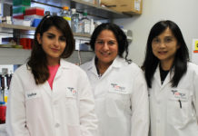 Dr. Sara Reyna, UTRGV assistant professor (at center), has received more than $400,000 from the National Institutes of Health to study the relationship between proteins in white blood cells and inflammation. With Reyna (from left) are Sarai Ramirez, a junior majoring in biology, and research associate Phoebe Fang-Mei Chang. Not pictured is research associate Daniel Acevedo. (Photo by Jennifer L. Berghom)