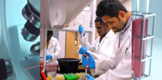Graduate research assistants Emmanuel Anning, Godwin Peasah-Darkwah and Asif Shahriar work in the lab to assist in the development of a treatment for advanced pancreatic cancer. (UTRGV Photo Office of Research & New Program Development)